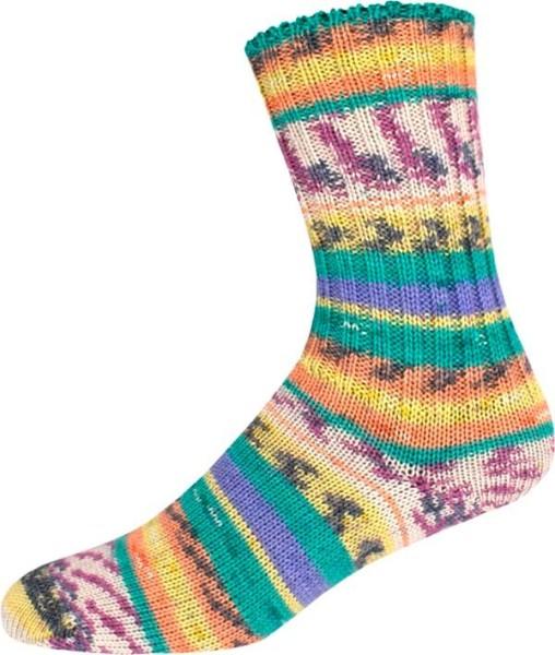Sockenwolle Wellness Color Sort295 2541